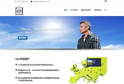 China Web Design example.
