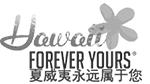 Chinese Web Design